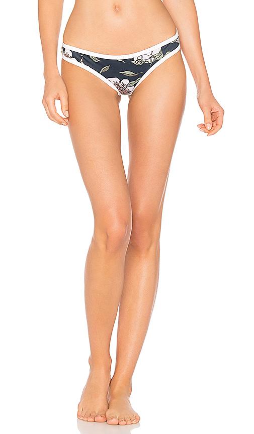TAVIK Swimwear Jayden Moderate Bikini Bottom in Blue