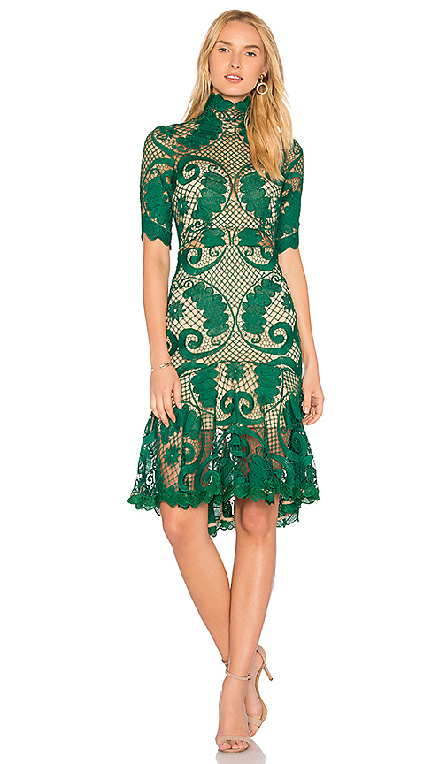 THURLEY Babylon Lace Dress in Green. - size 10/M (also in 12/L,6/XS)