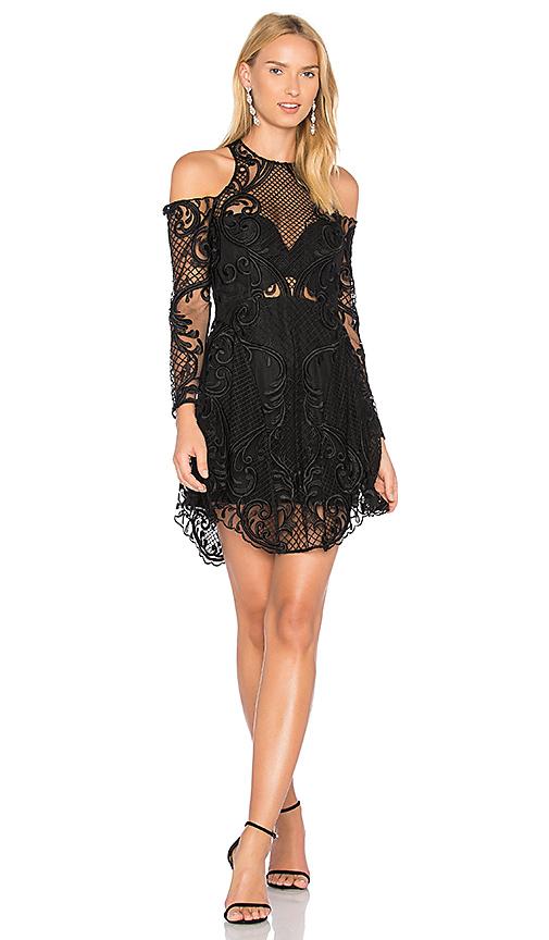 Mini Dresses  Sexy Bodycon Sequin amp Lace Mini Dresses
