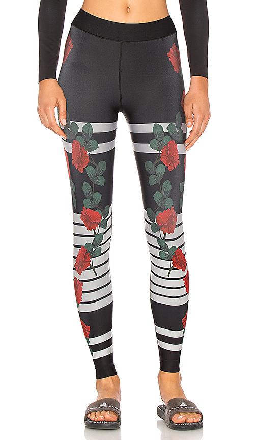 ultracor La Vie En Rose Legging in Black