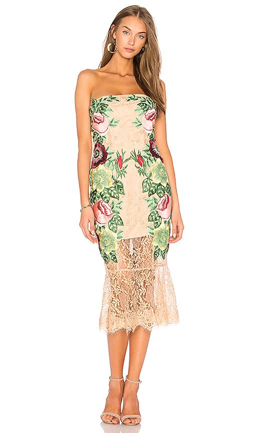 VONE Roya Dress in Blush