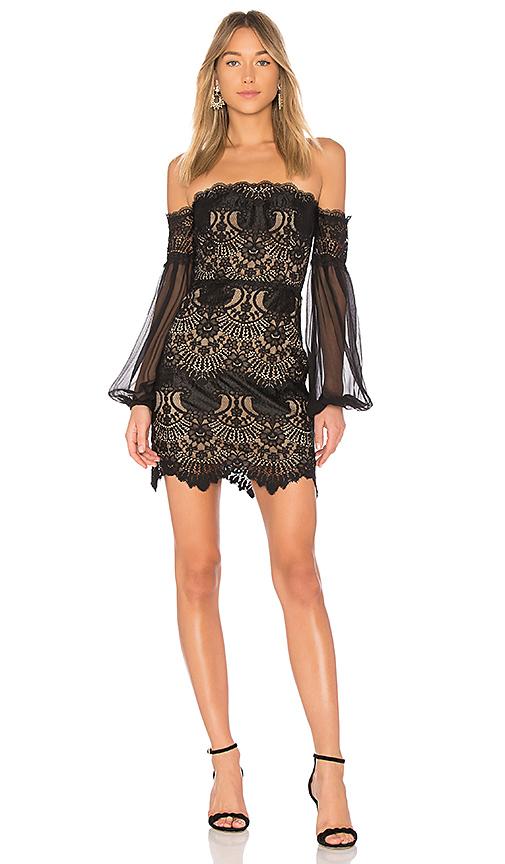 X by NBD Annica Dress in Black. - size S (also in L,M,XS, XXS)