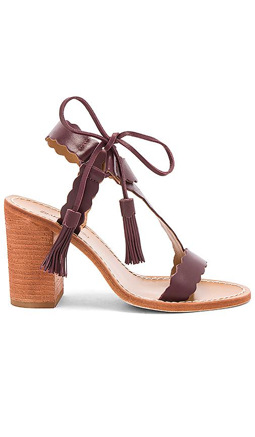 Zimmermann Scallop Tie Heel in Burgundy