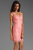Image 3 of BB Dakota Allium Lace Dress in Pink Lemonade