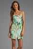 Image 1 of BB Dakota Debralyn Palm Beach Printed Dress in Mint Julep