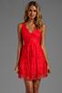 Image 1 of BCBGMAXAZRIA Sleeveless Lace Dress in Bright Poppy