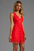 Image 3 of BCBGMAXAZRIA Sleeveless Lace Dress in Bright Poppy