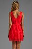 Image 4 of BCBGMAXAZRIA Sleeveless Lace Dress in Bright Poppy