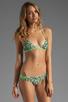 Image 1 of camilla and marc Lucia Bikini in Leopard Print