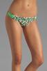 Image 4 of camilla and marc Lucia Bikini in Leopard Print