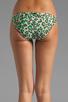 Image 5 of camilla and marc Lucia Bikini in Leopard Print