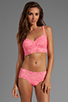 Image 4 of Cosabella Never Say Never Hottie Hot Pant in Neon Rose