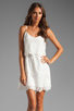 Image 1 of Dolce Vita Jeralyn Dress in White