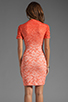 Image 4 of Dolce Vita Alexis Stretch Lace Dress in Pink Ombre