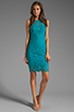Image 2 of Dolce Vita Tamia Teal Lace Tank Dress in Teal