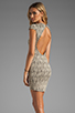 Image 1 of DV by Dolce Vita Betsey Stretch Rose Lace Dress in Nude/Black