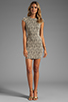 Image 2 of DV by Dolce Vita Betsey Stretch Rose Lace Dress in Nude/Black