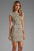 Image 3 of DV by Dolce Vita Betsey Stretch Rose Lace Dress in Nude/Black
