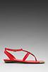 Image 2 of DV by Dolce Vita Apex Sandal in Coral