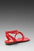 Image 4 of DV by Dolce Vita Apex Sandal in Coral