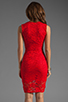Image 4 of Donna Mizani Passion Lace Dress in Red