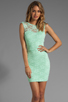 Image 1 of Donna Mizani Passion Lace Boat Neck Dress in Mint