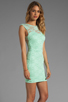 Image 3 of Donna Mizani Passion Lace Boat Neck Dress in Mint