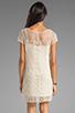 Image 4 of Ella Moss Hailee Crochet Dress in Natural