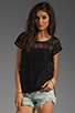 Image 1 of Ella Moss Jasmine Lace Top in Black