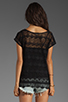 Image 2 of Ella Moss Jasmine Lace Top in Black