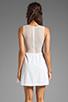 Image 4 of For Love & Lemons Lulu Dress in Ivory