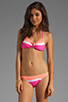 Image 1 of Gypsy 05 Vera Halter Swimsuit Top in Sunrise