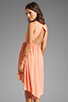 Image 1 of JARLO Allondra Dress in Apricot