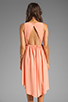 Image 4 of JARLO Allondra Dress in Apricot