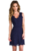 Image 1 of Joie Allover Lace Nikolina B Dress in Royal Navy