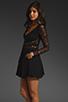 Image 4 of keepsake Paradise Stars Dress in Black