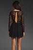 Image 5 of keepsake Paradise Stars Dress in Black