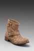 Image 1 of Matisse Richards Short Motorcycle Boot in Beige Leopard
