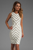 Image 1 of MILLY Fabulous Italian Stretch Stripes and Mini Stripes Tank Dress in Cork