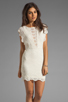 Image 1 of Nightcap Caletto Victorian Lace Mini Dress in Ivory