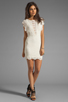 Image 2 of Nightcap Caletto Victorian Lace Mini Dress in Ivory