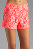 Image 4 of Naven Hot Shorts in Neon Salmon Lace