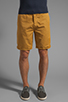 Image 1 of Obey Classique Short in Inca Gold