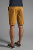 Image 4 of Obey Classique Short in Inca Gold