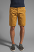Image 5 of Obey Classique Short in Inca Gold