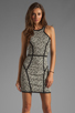 Image 1 of Parker Palms Dress in Black/White