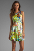 Image 1 of Parker Rio Dress in Tropic