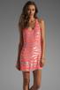 Image 1 of Parker Tonal Zebra Sage Dress in Grapefruit