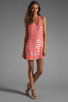 Image 2 of Parker Tonal Zebra Sage Dress in Grapefruit
