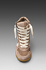 Image 5 of Sam Edelman Bennett Sneaker in Chateaux Grey